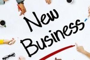 Số doanh nghiệp mới và vốn tăng mạnh