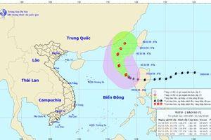 Không có tàu hoạt động trong khu vực ảnh hưởng của bão số 7