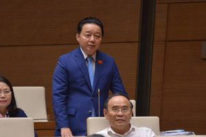 Bộ trưởng TN-MT: Chỉ mất 2 tháng để giải tỏa hết container phế liệu tồn đọng