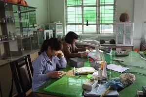 Quảng Ninh: Sẽ đào tạo nghề cho 35.000 lao động ở nông thôn trong năm 2018