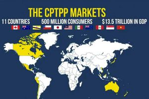 CPTPP có hiệu lực vào cuối năm 2018
