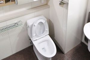 Sốc: Nữ sinh trung học vứt bỏ con mới đẻ vào toilet sân bay