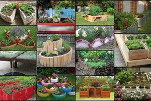 Tự tay trang trí sân vườn, vườn hoa nhỏ đẹp, đơn giản mà cực độc
