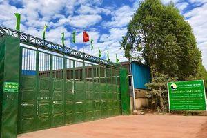 Bắc Giang: Công ty TNHH Việt Ind sai phạm đầy rẫy, coi thường tính mạng công nhân