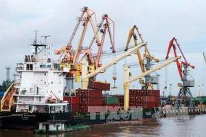 Khơi thông điểm 'nghẽn' cho logistics thành phố Cảng