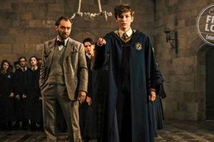 Cùng giải mã những chi tiết quan trọng của Harry Potter được 'cài cắm' trong Sinh Vật Huyền Bí: Tội Ác Của Grindelwald