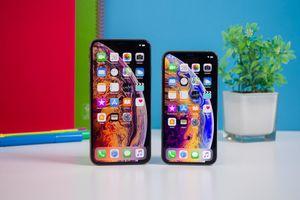 Tim Cook tuyên bố: Bản cập nhật iOS 12 của Apple giờ đây đã có mặt trên 60% thiết bị