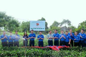 Thái Nguyên: Những thành quả khởi sắc của diện mạo nông thôn mới