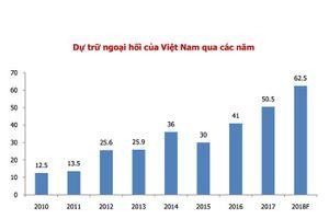 Tỷ giá đô la duy trì ổn định nhờ vào sự hỗ trợ từ NHNN