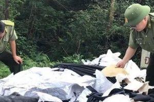 Phú Thọ: Rác thải bủa vây khu di tích Đền Hùng