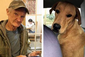 Chó... bắn người trọng thương tại Mỹ