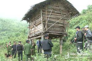 Hành trình triệt phá nhóm mua bán ma túy trong rừng ở Nghệ An