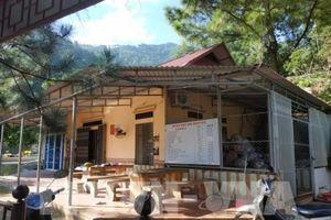 Hà Nội: Giải quyết dứt điểm vi phạm về quản lý đất rừng phòng hộ ở Sóc Sơn