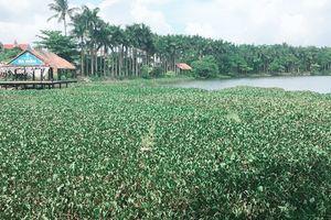 TP. Đồng Hới- Quảng Bình: Dự án Công viên Đồng Sơn 13 năm vẫn bỏ hoang?