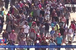 Đoàn người di cư Trung Mỹ mới tới Mỹ