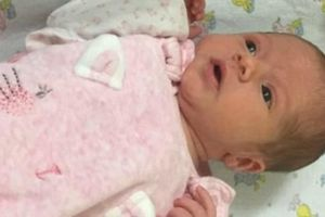 Trung Quốc: Cha đẻ nhẫn tâm vứt con gái mới sinh vì muốn con trai