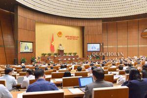 Quốc hội thảo luận về dự án Luật sửa đổi, bổ sung các luật có quy định liên quan đến quy hoạch