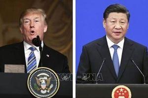 Tổng thống Trump: Cuộc điện đàm giải quyết bất đồng thương mại với Chủ tịch Tập Cận Bình diễn ra 'rất tốt đẹp'