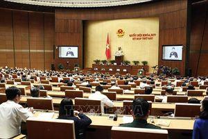 Thông cáo số 11, Kỳ họp thứ 6, Quốc hội khóa XIV