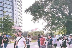 Đà Nẵng 'đau đầu' vì người nước ngoài dẫn tour 'chui'