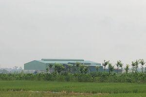 Phù Lỗ, Sóc Sơn: Xưởng mọc trái phép trên đất NN, cần xử lý nghiêm