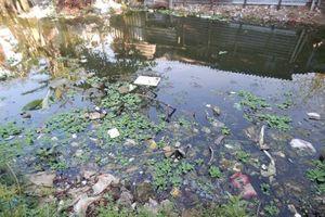Những con sông hạn mặn, ô nhiễm vì rác