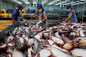 Nhu cầu xuất khẩu đẩy giá tôm và cá tra trong nước tăng cao vào cuối năm