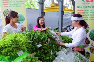 Ứng dụng công nghệ cao trong sản xuất nông nghiệp ở Hà Nội: Nâng cao giá trị nông sản