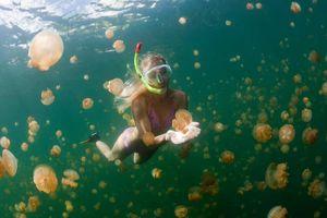 Quốc đảo Thái Bình Dương cấm kem chống nắng để bảo vệ san hô