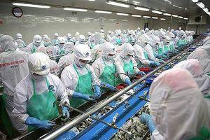 9 tháng, Thủy sản Minh Phú (MPC) lãi sau thuế 535 tỷ đồng