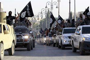 IS Syria trỗi dậy bất ngờ, Iraq điều gấp 3 vạn quân