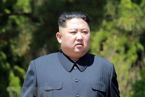 Tình báo Hàn Quốc dùng phần mềm 3D theo dõi sức khỏe ông Kim Jong-un