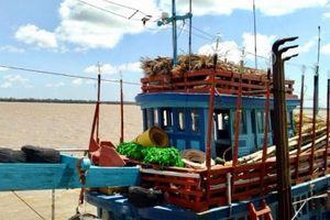 VNPT xây dựng phần mềm dành riêng cho ngành thủy sản