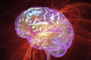 Stress khiến não bộ tổn thương thế nào?
