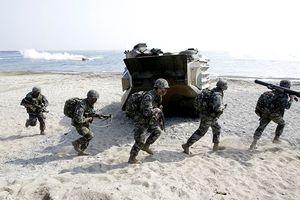 Bán đảo Triều Tiên vừa ấm lên, Mỹ - Hàn đã nối lại tập trận