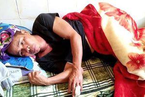 Nghệ An: Bị lợn rừng 'khủng' tấn công, 1 người dân nhập viện