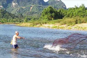 Theo chân đội đèn săn đặc sản cá mát chỉ có ở xứ Nghệ