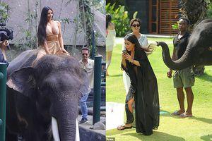 Kim Kardashian khoe trọn vẹn đường cong cưỡi voi ở Bali nhưng đây mới là điều được chú ý nhất