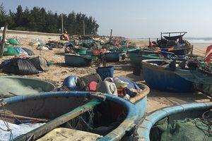 Bà Rịa – Vũng Tàu: Ngư dân làm giàu từ nghề thuyền thúng