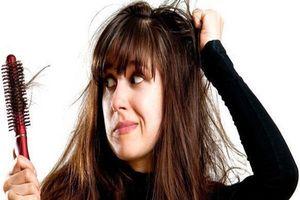 Những điều chị em nên biết về tình trạng rụng tóc theo mùa