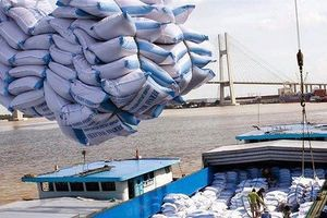 Doanh nghiệp gạo được tháo 'gông' nhưng xuất khẩu vẫn giảm hai con số