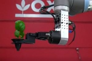 Mỹ có nông trại đầu tiên do robot quản lý hoàn toàn
