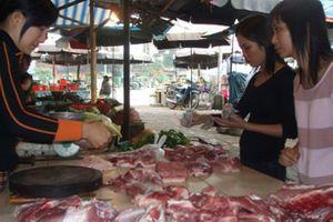 Lợn hơi xuống dưới 50.000 đồng/kg, giá thịt tại các chợ vẫn cao