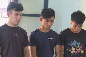 Bắt ba thanh niên thuê ôtô đi trộm nông sản