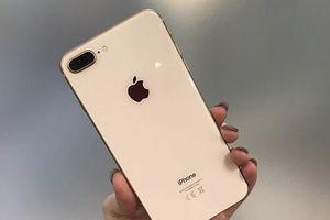 iPhone 8 hàng tân trang chính hãng giá từ 500 USD