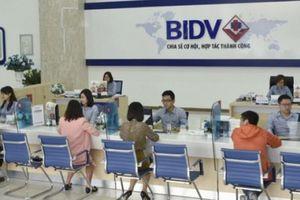 Sau ông Trần Bắc Hà, BIDV sắp có Chủ tịch HĐQT mới?