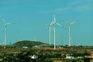 Khảo sát làm dự án điện gió 'khủng' ở vùng biển Kê Gà