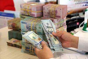 Giá USD liên tục giảm