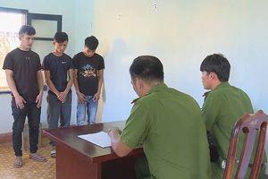 Đắk Lắk: Nhóm 'đạo chích' trộm cắp nông sản trị giá hàng tỷ đồng bị bắt