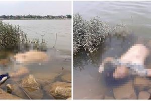 Hà Tĩnh: Bàng hoàng phát hiện thi thể một người phụ nữ dạt bên bờ sông La